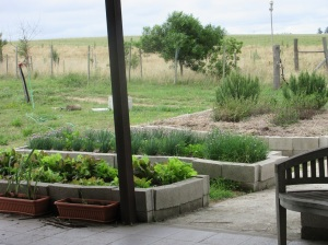 kitchen-garden-1
